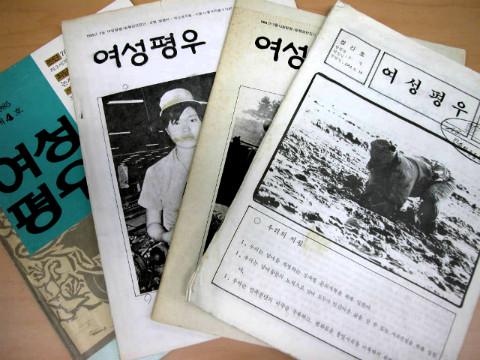 한국의 진보적 여성운동과 여성평우회