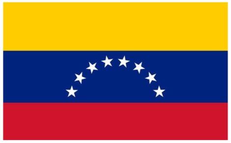 베네수엘라 현재 상황에 대한 단상