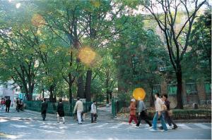 그 길에 마로니에 잎이 지나던 날 - 손홍규