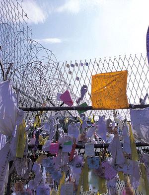통일의 꽃이 넘은 분단의 벽 임수경 방북 사건
