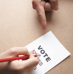 합의제 민주주의 원리와 운영 목표