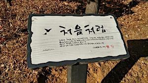 신영복 선생의 '더불어 숲길'을 가다.