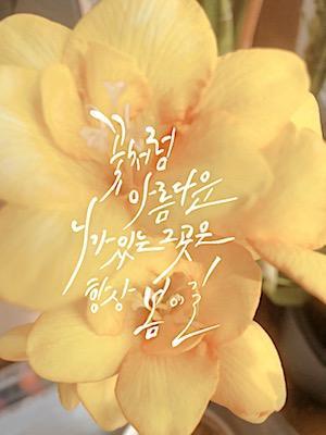 꽃처럼 아름다운 니가 있는 그곳은 항상 봄이길