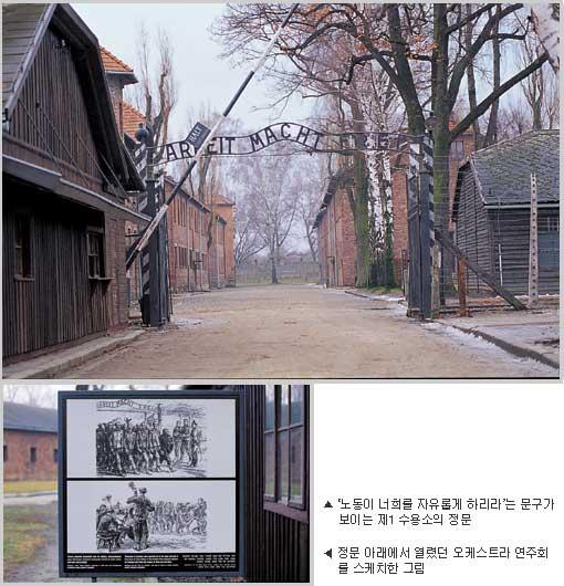 홀로코스트의 기억... 아우슈비츠 박물관 사진