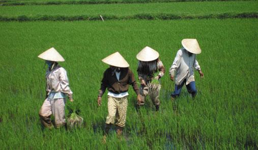 베트남, 서서히 내딛는 민주화의 걸음 사진